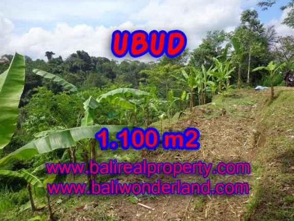 Peluang Investasi Properti di Bali - Jual Tanah murah di UBUD TJUB407
