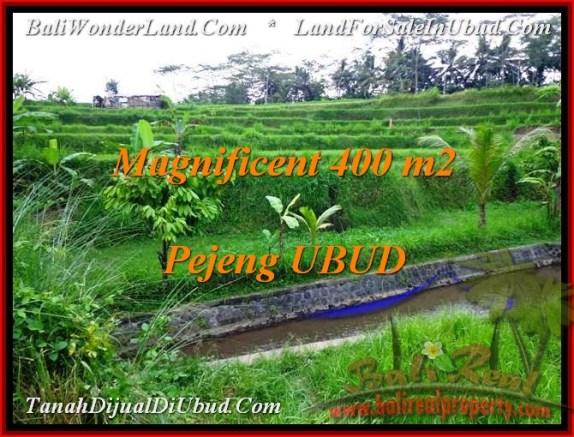 TANAH MURAH di UBUD BALI 400 m2  View sawah dan Sungai