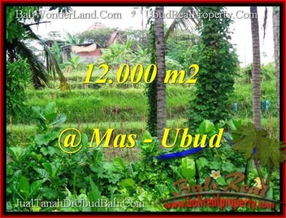 TANAH di UBUD BALI DIJUAL 12,000 m2 di Sentral Ubud