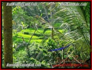 TANAH JUAL MURAH  UBUD BALI 725 m2  View Tebing,sawah dan sungai