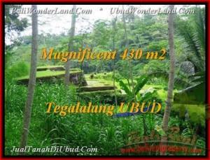TANAH di UBUD BALI DIJUAL 430 m2 di Ubud Payangan