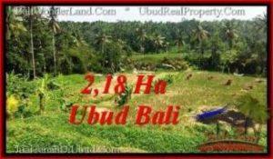 DIJUAL TANAH di UBUD Untuk INVESTASI TJUB546