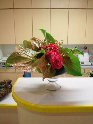 バラ アンスリウム 縞フトイ 受付の花
