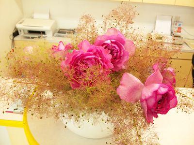 けむりの木 スモークツリー バラ イブピアッチェ 受付の花