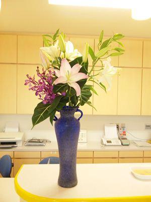 オリエンタル系ユリ モカラ アロカシア グリーンベルベット 受付の花