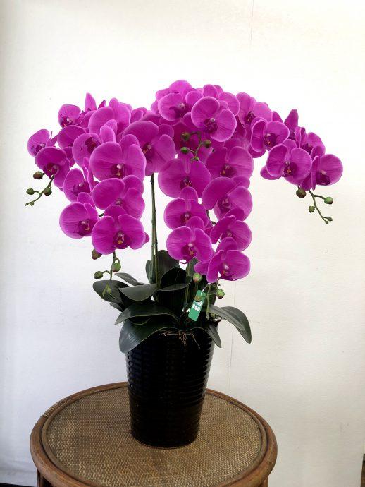胡蝶蘭 造花 5本立ち