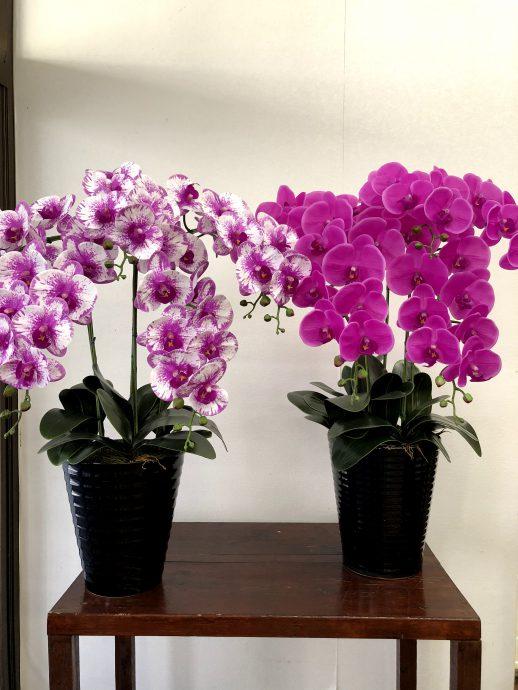 胡蝶蘭 造花