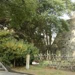 鹿尾菜櫓跡