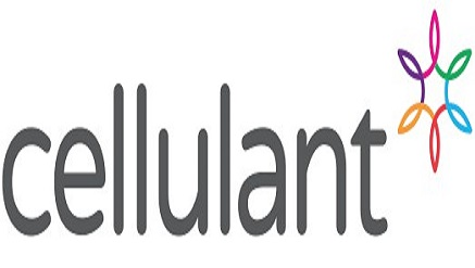 Cellulant lands Africa's largest investment in the fintech Space