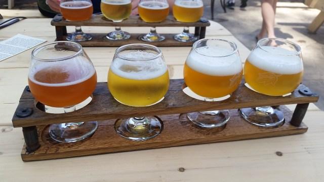 Free tasting samples at craft brewery Allagash
