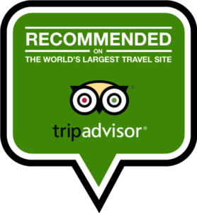 Tripadvisor Badge Tandem Flight