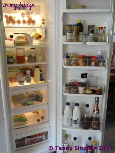 in my fridge December 2011