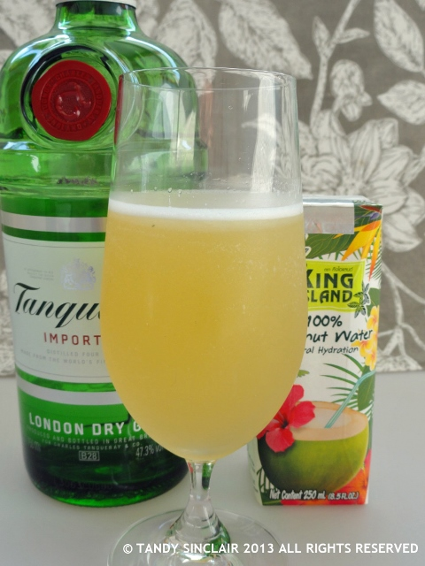 Tanqueray Gin Breeze Cocktail