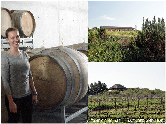 Nadia, Winemaker at Waterkloof