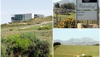 Welcome To Waterkloof in answer to Liebster Award II