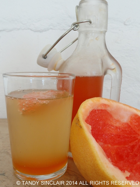 Grapefruit Cordial for Friday's Food Quiz Number 73