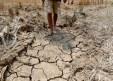 7/3/16 Ταϊλανδός αγρότης περιηγείται στην ξηρή γη της επαρχίας Chachoengsao. Η Ταϊλάνδη διανύει μια από τις χειρότερες περιόδους ξηρασίας των τελευταίων δεκαετιών, λόγω κλιματικής αλλαγής και του ενισχυμένου Ελ Νίνιο που σε συνδυασμό με τις θερμοκρασίες της εποχής επηρεάζει την αγροτική παραγωγή της χώρας και ειδικά τις ρυζοφυτείες.