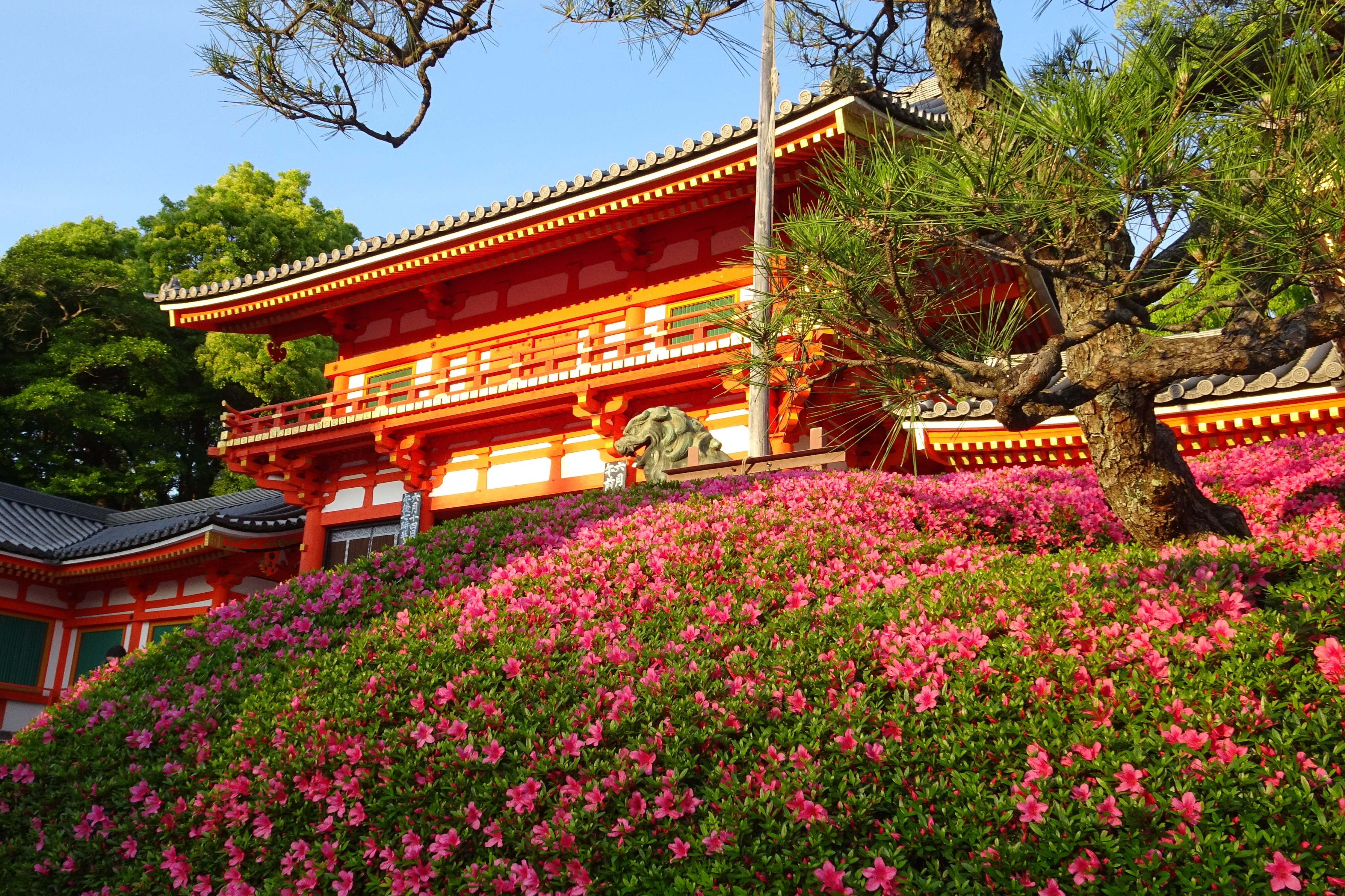 寫不盡的京都 | 閒遊雜憶