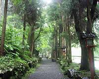 京都 参道