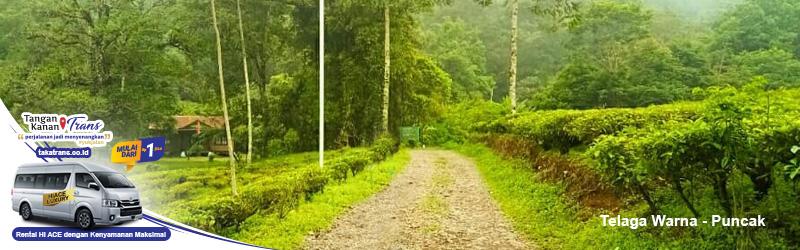 027 - Sewa Hiace Ke Telaga Warna Puncak Bogor