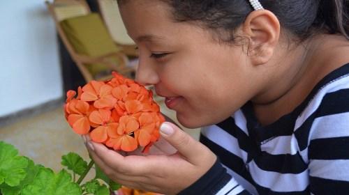 Perte de l'odorat et du goût : coronavirus ou non ?