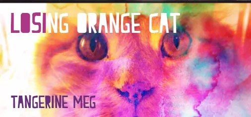 "cat photo with double exposure and rainbow colours and header ""Losing Orange Cat"" in chunky type face"