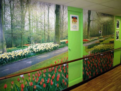 deerhurst-woodland-and-tulip-wallpaper_small