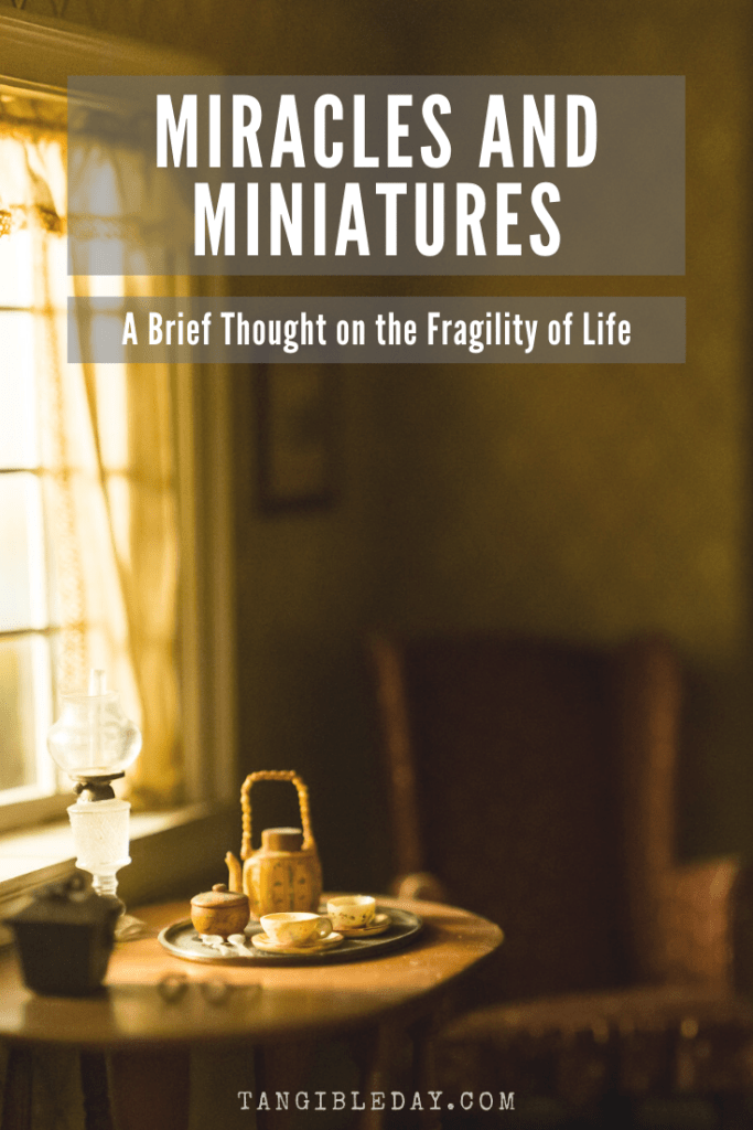 The miracle of life and fragility of living in the world