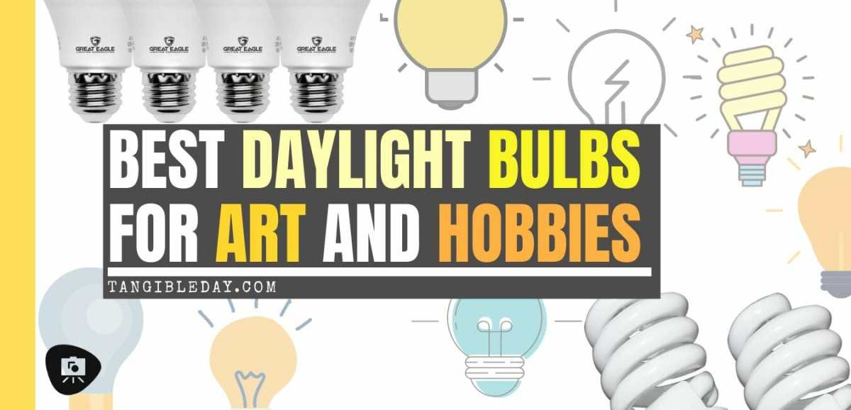 Best Daylight Bulbs for Art and Hobbies (Tips for Artists)