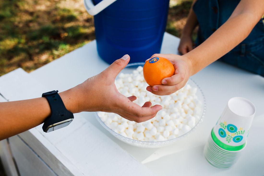 Cuties Mandarin Oranges