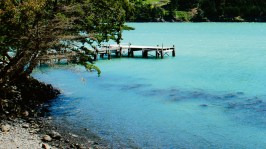 TANGO_online_hr-pigeon-bay-jetty-from-annandale-gardens