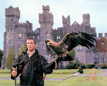 A professional hawk flyer on the grounds of Ashford Castle
