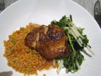 Grouper Dish Sea Porch