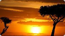 Sunset on an African Safari Travel.