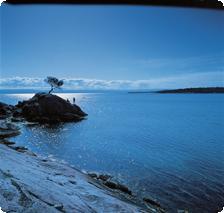 Tourism Tasmania and George Apostolidis