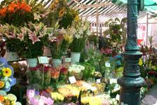 Bouquets of flowers in every color