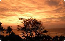 The Sunset at Punta Mita