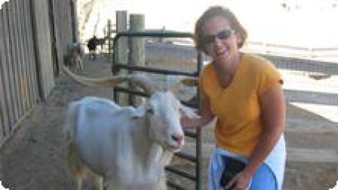 The jealous goat
