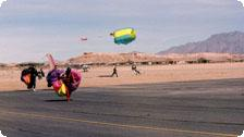 Mesquite skydivers