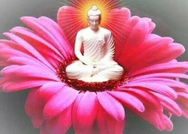 http://www.nirvanapeace.com/images/2014/1/buddha_pic/buddha_flower_nirvana.jpg