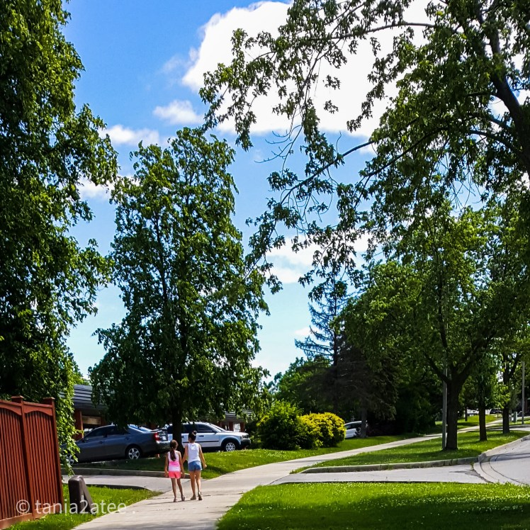 two girls walking on the sidewalk with trees all around