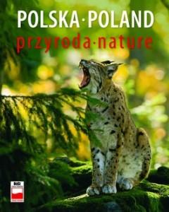 Polska przyroda 240x300 - Polska przyroda - Renata Krzyściak-Kosińska, Marek Kosiński