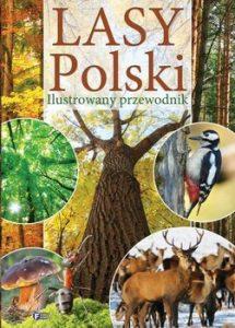 Lasy Polski 215x300 - Lasy Polski