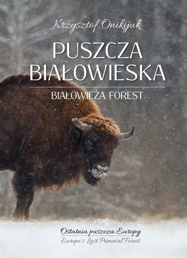Puszcza Bialowieska Ostatnia puszcza Europy - Puszcza Białowieska Ostatnia puszcza Europy Krzysztof Onikijuk