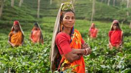 lets-travel-to-bangladesh-with-simon-urwin-featured