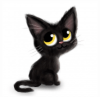 Le blog de chat noir