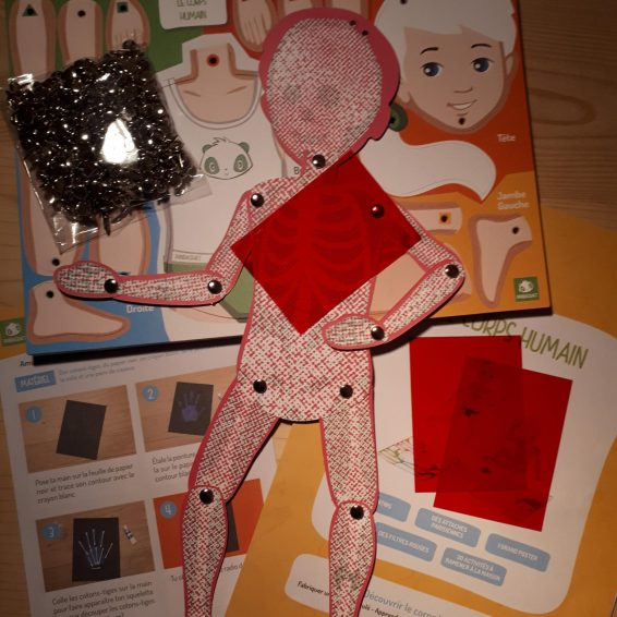 Kit corps humain Pandacraft