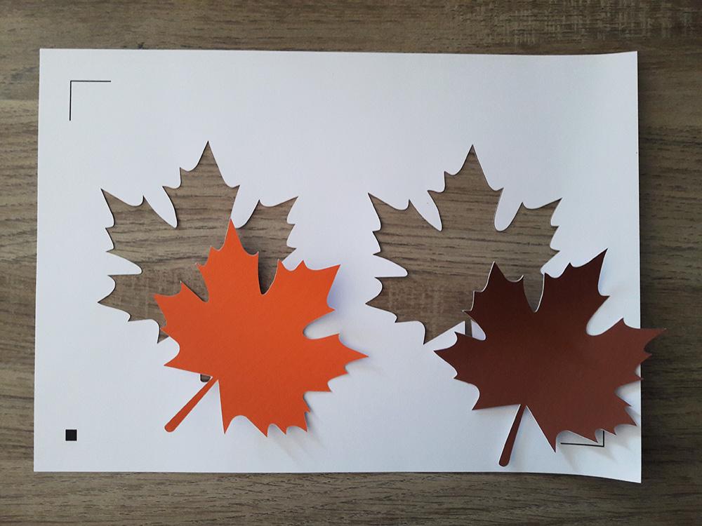 Silhouette - feuilles découpées et page