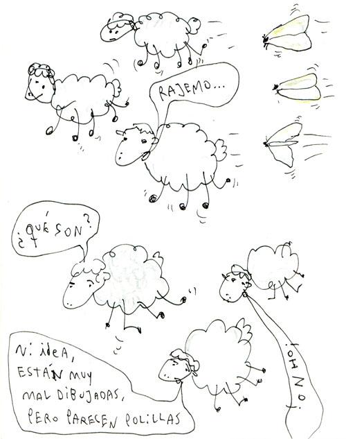 ovejas
