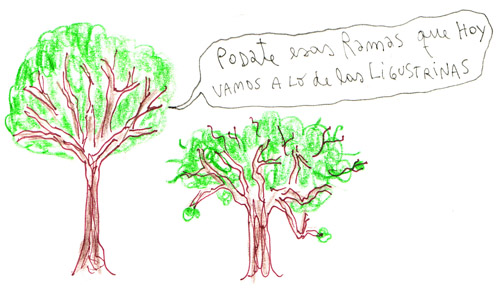 podate esas ramas